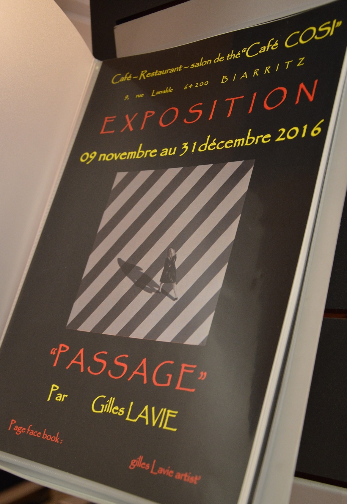 Gilles Lavie - Expo passages 2016 - Biarritz